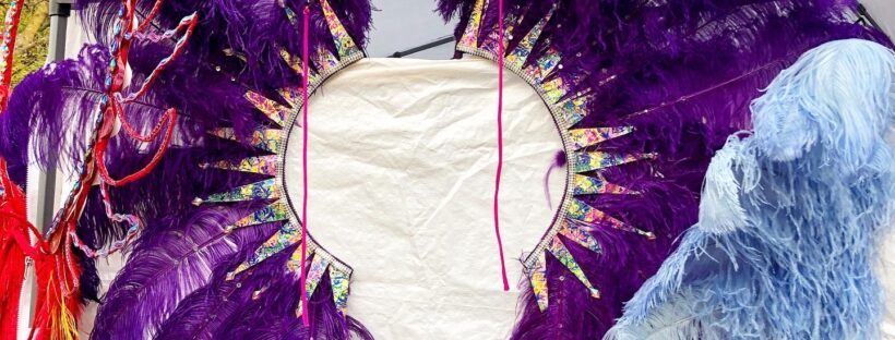 Frontline carnival backpack